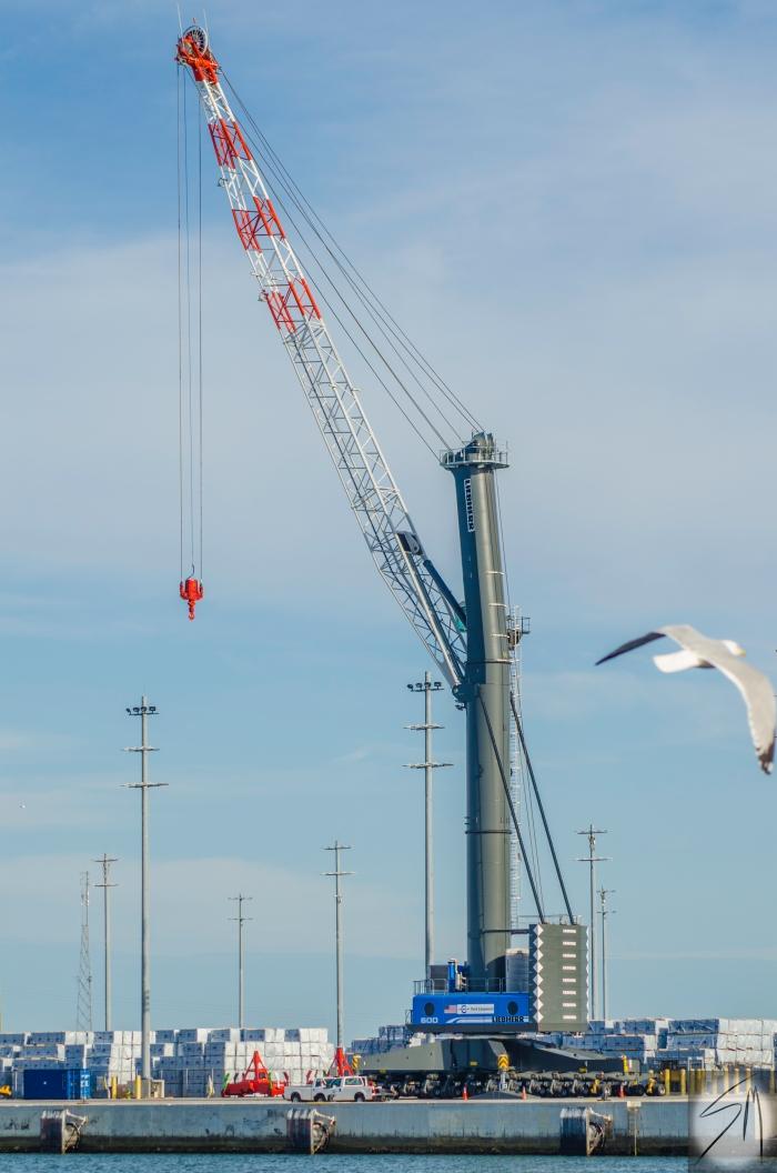 Port Crane 2.16 (4)